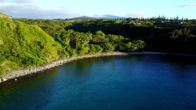 Bas volants vers Egde des bois sur la côte de Maui