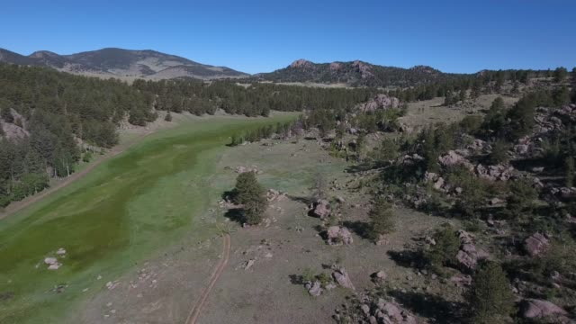 flying near grassy valley over trees .mov - appaloosa stock videos and b-roll footage