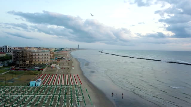 Flying over a beach at sunrise with a flock of seagulls (Riviera Romagnola)