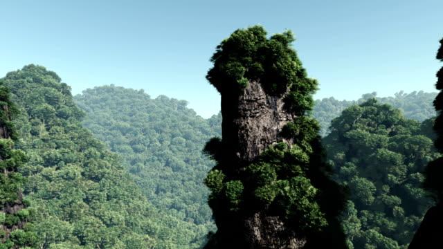 Fliegt über einem Dschungel-Landschaft und den Wald
