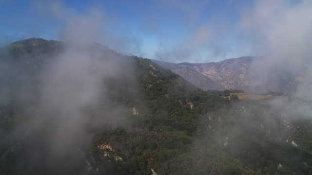 vídeos de stock, filmes e b-roll de flying over a misty ridge in angeles national forest in the san gabriel mountains, california. shot in 2010. - angeles national forest
