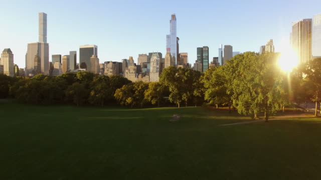 flying over central park looking at new york city skyline at sunrise light - panoramica verso l'alto video stock e b–roll