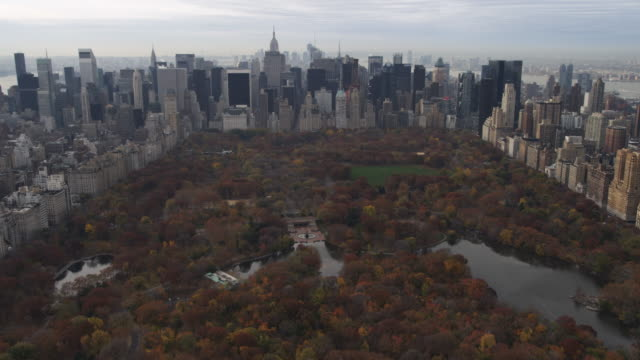flying over central park toward midtown and lower manhattan. shot in 2011. - central park manhattan stock videos & royalty-free footage