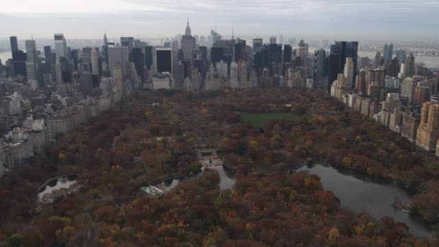 flying over central park toward midtown and lower manhattan,. shot in 2011. - artbeats 個影片檔及 b 捲影像
