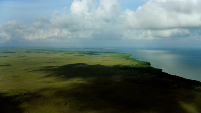 vídeos de stock, filmes e b-roll de flying over coastal landscape in yucatan - yucatán