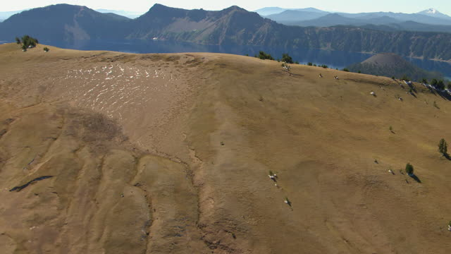 ms aerial flying over crater rim to reveal crater lake / oregon, united states - crater lake oregon stock videos & royalty-free footage