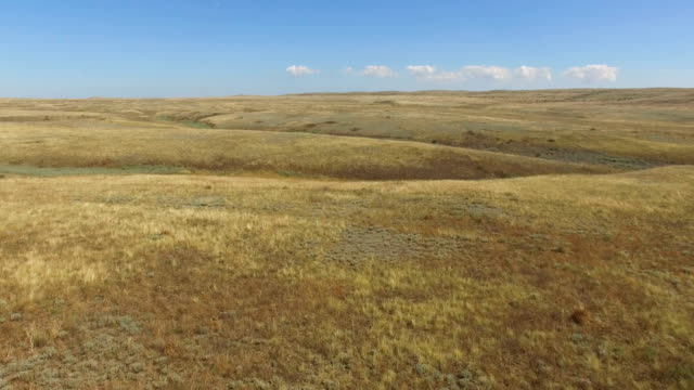 AERIAL: Flying over deserted steppe