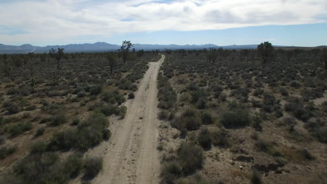 flying over dirt road in joshua tree forest - drone aerial video 4k joshua tree national forest, desert barren land, no people with remote location cactus california desert, mojave desert, with extreme terrain 4k nature/wildlife/weather - joshua tree national park stock videos & royalty-free footage