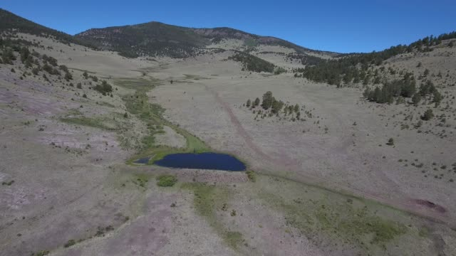 flying over field over water to mountain .mov - appaloosa stock videos and b-roll footage