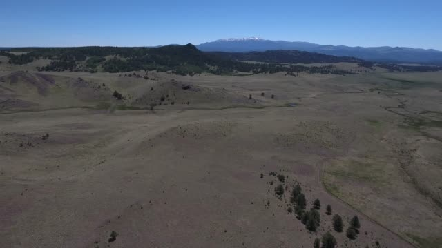 flying over field with pikes peak in view 2.mov - appaloosa stock videos and b-roll footage