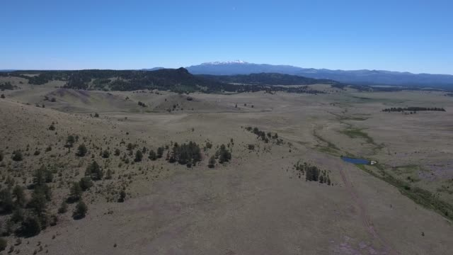 flying over field with pikes peak in view .mov - appaloosa stock videos and b-roll footage