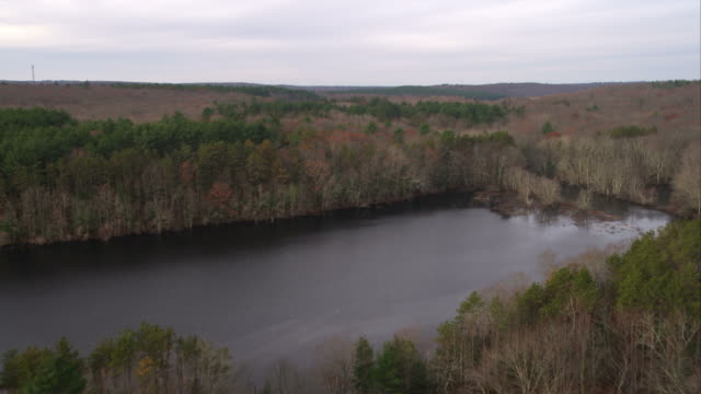 flying over forest and lake in western rhode island. shot in november 2011. - artbeats 個影片檔及 b 捲影像
