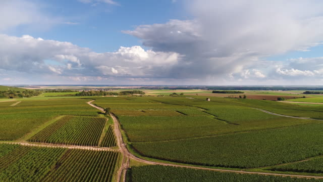 vídeos de stock e filmes b-roll de flying over french vineyards with beautiful cloudscape - vinha