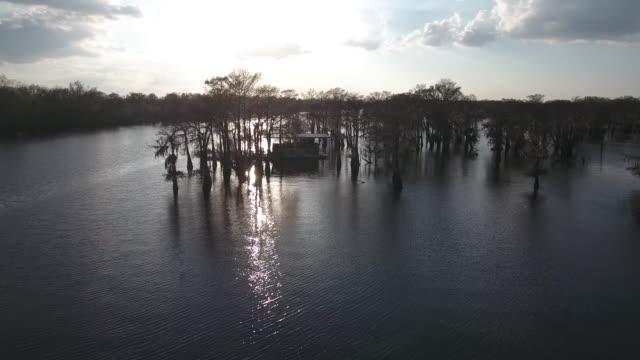 Flying over house in swamp - Drone Aerial 4K Everglades, Swamp bayou with wildlife alligator nesting Ibis, Anhinga, Cormorant, Snowy Egret, Spoonbill, Blue Heron, eagle, hawk, cypress tree 4K Nature/Wildlife/Weather