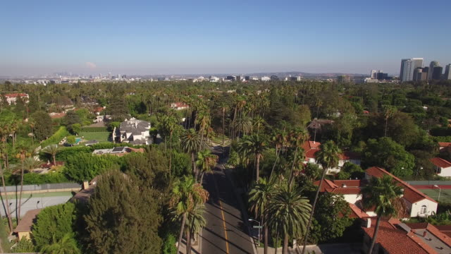 stockvideo's en b-roll-footage met vliegen over palmbomen in beverly hills, californië - beverly hills californië