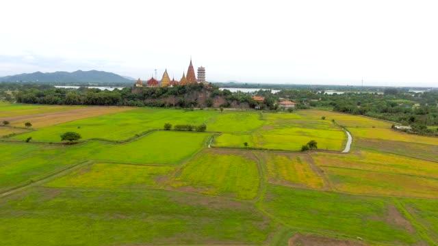 vídeos y material grabado en eventos de stock de volando sobre terrazas de arroz en un hermoso día - rice paddy