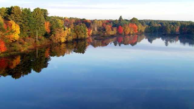 vidéos et rushes de flying over river reflecting autumn trees - maine