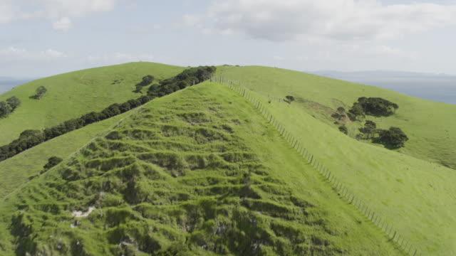 vídeos y material grabado en eventos de stock de flying over shot of the hilly waiheke island - auckland
