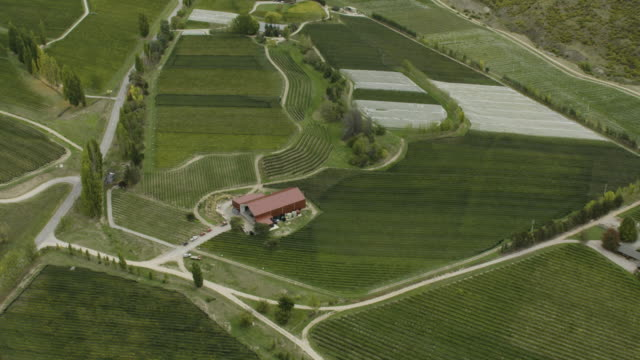 flying over shot of vineyards near cromwell - irrigation equipment stock videos & royalty-free footage