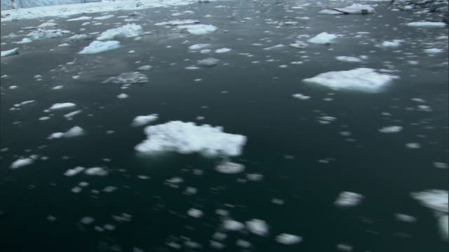 flying over small icebergs floating in the prince william sound, alaska. available in hd. - prince william sound stock videos and b-roll footage