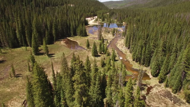 Flying over stream near colorado river - Drone Aerial Video 4K Colorado Rocky Mountains, Colorado river, Mountain dam at lake granby, beautiful water reflection, spring, pristine water, foliage, wildlife aspen trees discovery landscape 4K Sports