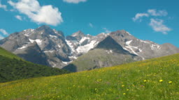 AERIAL: Flying over the blooming meadows with a view of the rocky French Alps