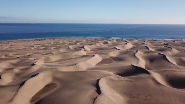 flying over the dunes in maspalomas, gran canaria, spain. - desert oasis stock videos & royalty-free footage