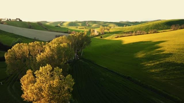 stockvideo's en b-roll-footage met vliegen over de heuvels in toscane - heuvellandschap