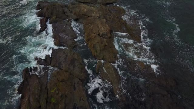 flying over the laguna beach tide pools - tidal pool stock videos and b-roll footage