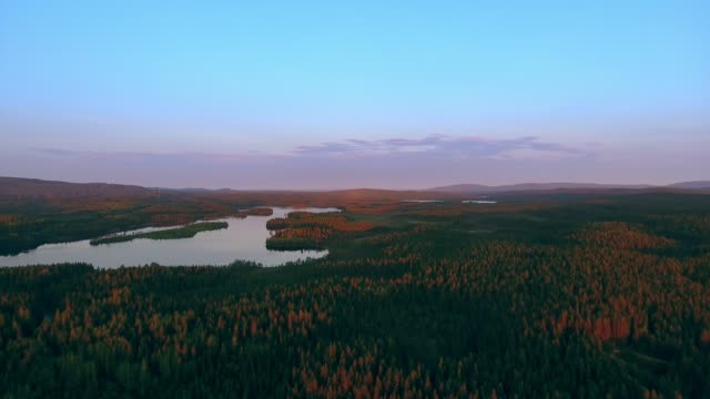 flying over the lake in karelia early in the morning - finlandia video stock e b–roll