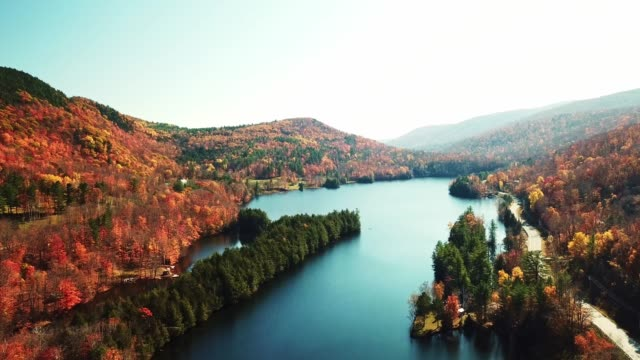 flying over the new hampshire lake - autumn leaf color stock videos & royalty-free footage