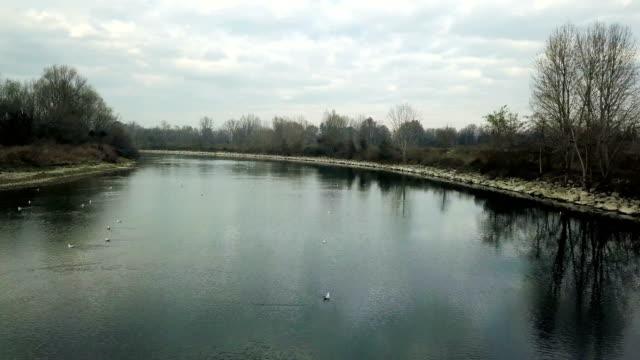 Fliegen über den Fluss