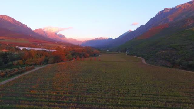 vídeos y material grabado en eventos de stock de volando sobre vastas tierras de cultivo - cabo winelands