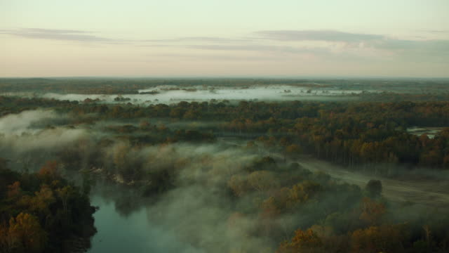 Flying Over Wetlands Covered By Mist