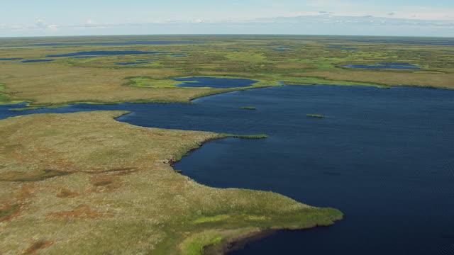 vidéos et rushes de flying over wetlands in western alaska - hémisphère nord