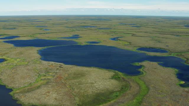 vidéos et rushes de flying over wetlands landscape in alaska - hémisphère nord