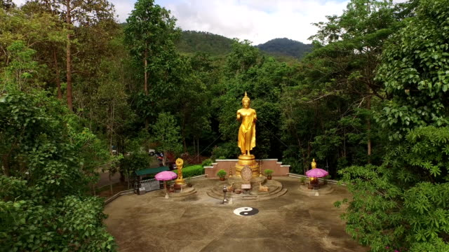 Flying shot of golden buddha statue out to wild forest