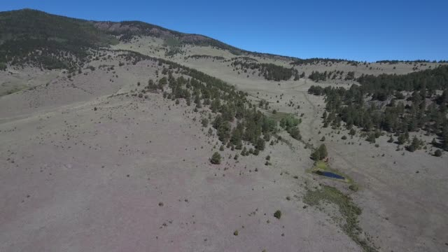 flying slow near mountain valley near water .mov - appaloosa stock videos and b-roll footage