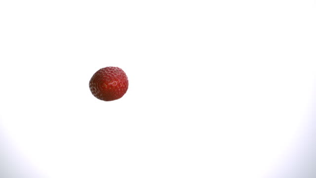 Flying strawberry in the air on white background falling down in slow motion tabletop