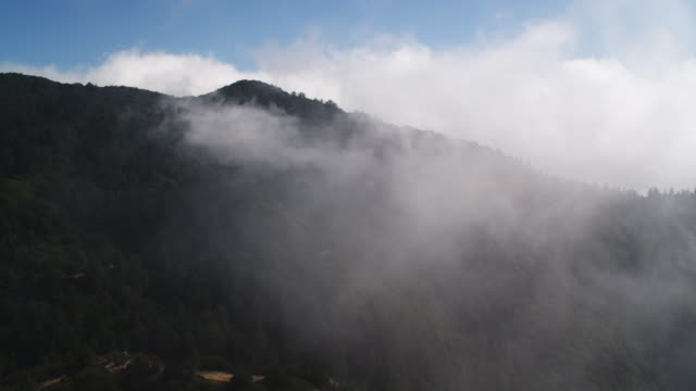 vídeos de stock, filmes e b-roll de flying through clouds over the angeles national forest on the slopes of the san gabriel mountains, california. shot in 2010. - angeles national forest