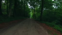 Flying through forest following gravel road. Flying through the woods, nature background