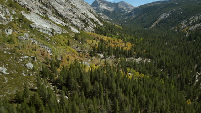 flying through the san joaquin river gorge towards peaks of the sierra nevada mountains in the john muir wilderness area. - wilderness area stock videos & royalty-free footage