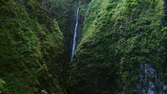 Flying through the verdant cliffs of a narrow gulch, revealing Kaluanui Falls in Sacred Falls State Park, Oahu, Hawaii.