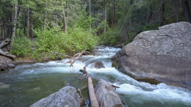 Flying through trees and over the American Fork River