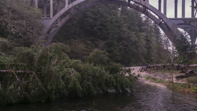 flying under cape creek bridge along the river - heceta head stock videos & royalty-free footage