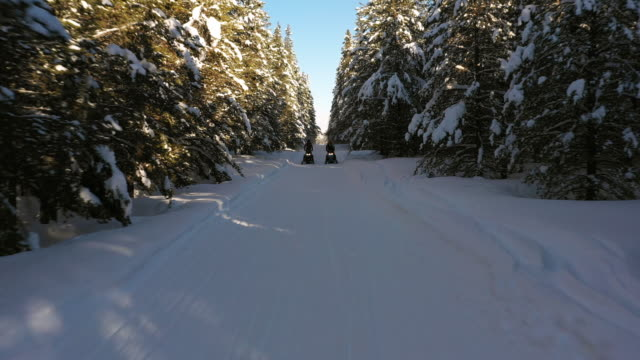 Flyover view of approaching men riding snowmobiles on forest trail / Island Park, Idaho, United States