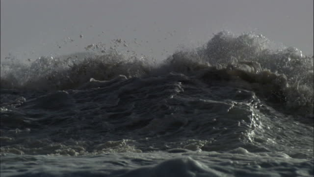 foam and spray catches wind as waves crash onto rocky coast during storm, new zealand - ominous stock videos & royalty-free footage