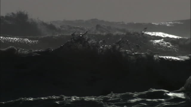 foam and spray catches wind as waves crash onto rocky coast during storm, new zealand - new zealand stock videos & royalty-free footage