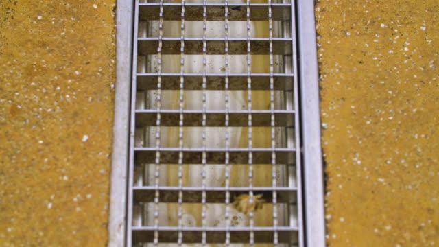 vídeos de stock, filmes e b-roll de foam liquid slowly flows down a drainage channel - drenagem