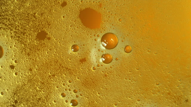 foam on beer - macro - empty beer glass stock videos and b-roll footage